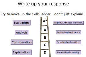 skills ladder