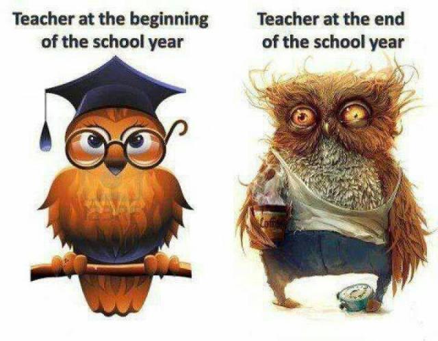 dead-teacher